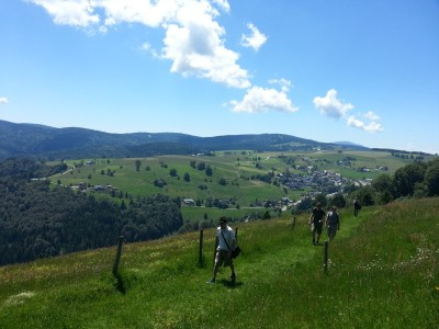 Hiking in the sunny Black Forest